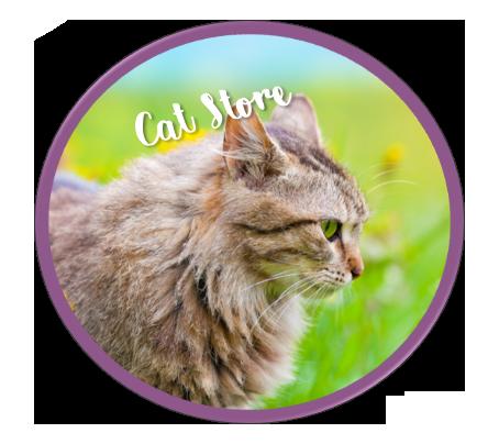 Feline Behavior Modification and Cat Training Solutions Purrfect Behavior Scottsdale, AZ North Phoenix, AZ 85251. 85254 85255 85258. 85259 85260 85262. 85264 85266. 85263 85253. 85377. 85050 85054 85028 Carrie Seay