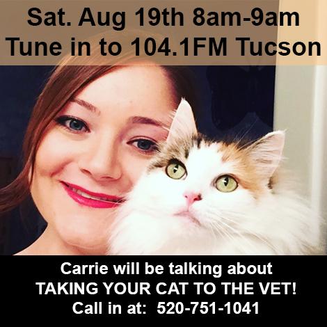 radio show, cat behavior, feline behavior, cat chat, tucson