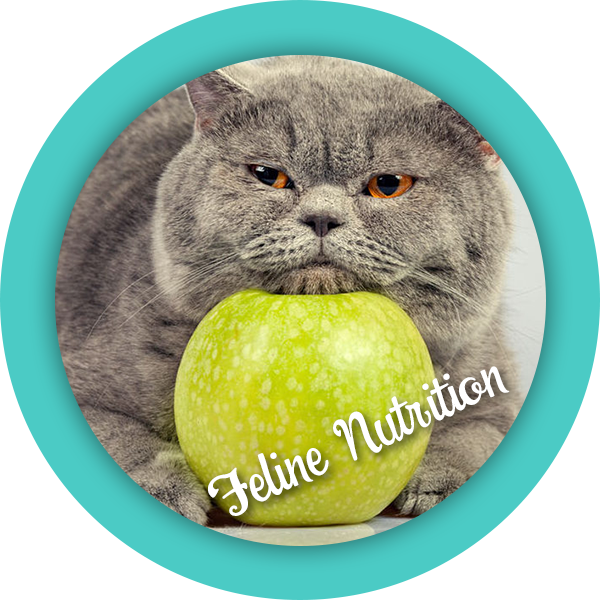 purrfectbehavior_nutrition